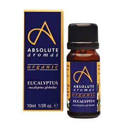 Absolute Aromas Organic Eucaluytpus Globulus Oil  10ml
